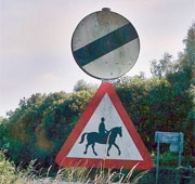 Horses on the road - national speed limit